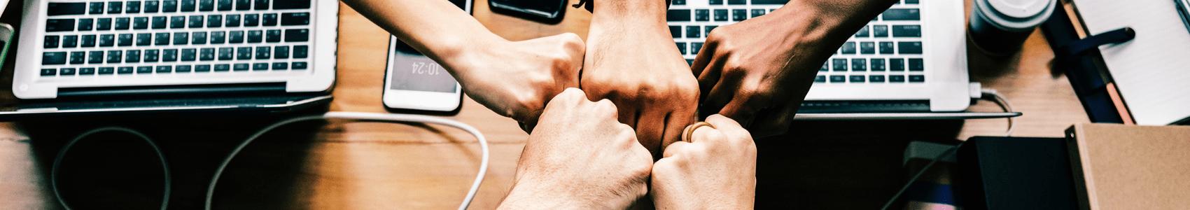 Intelligence collective : l'union fait-elle réellement la force ?